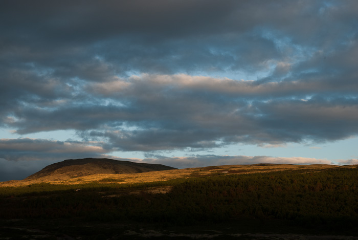 Evening in Rondane (Norway) [10017584__20120704-221152]